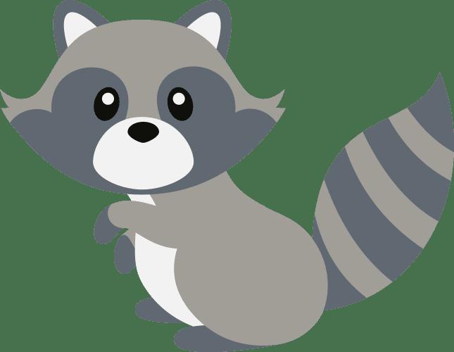 Sitting Raccoon
